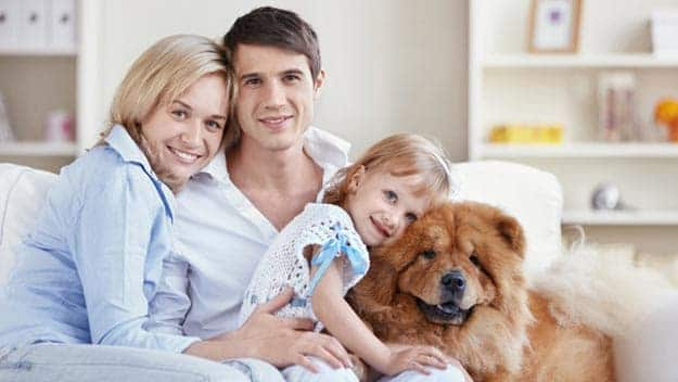 Wills & Trusts dog-young-family Direct Wills Ascot